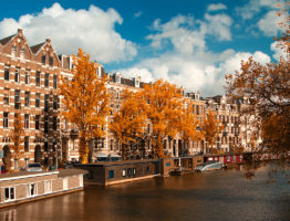 amsterdam-culture-and-history