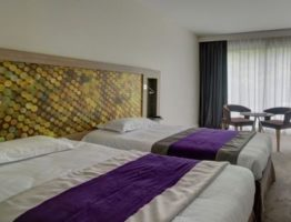hardelot hotel chambre
